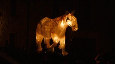 Credit: Colm Hogan: Orfeo, Galway Arts Festival 2009